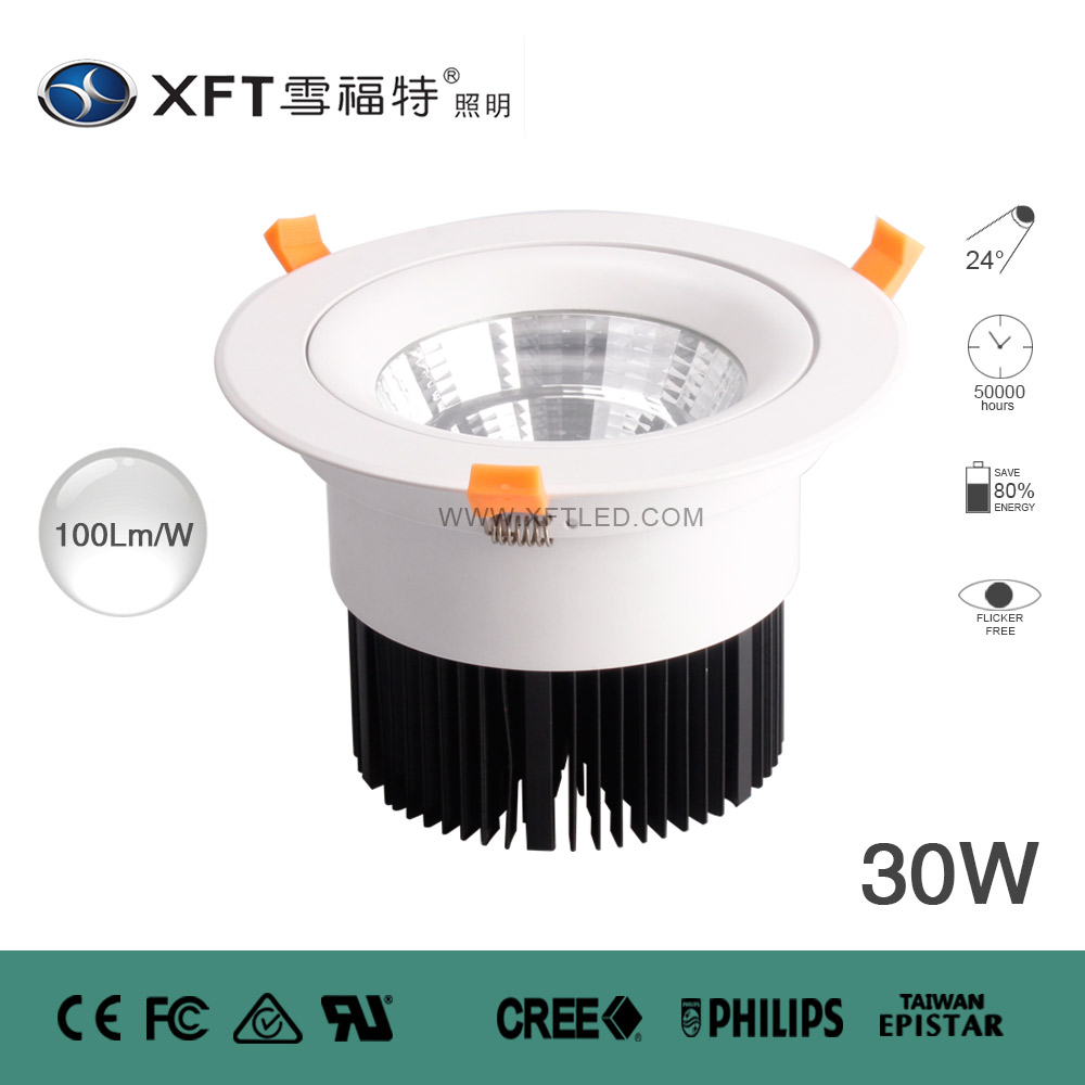 COB LED DOWN LIGHTS XFT-TD-COB1601