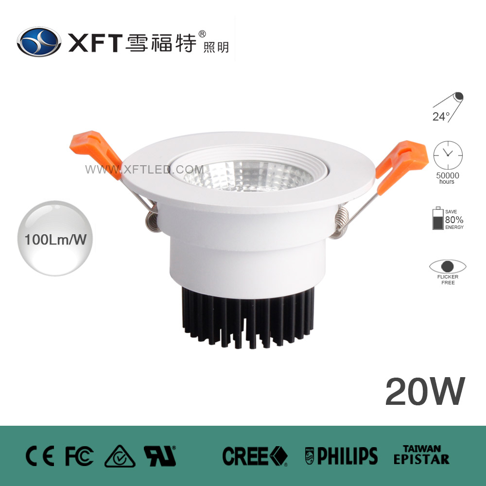 COB LED DOWN LIGHTS XFT-TD-COB009-20W